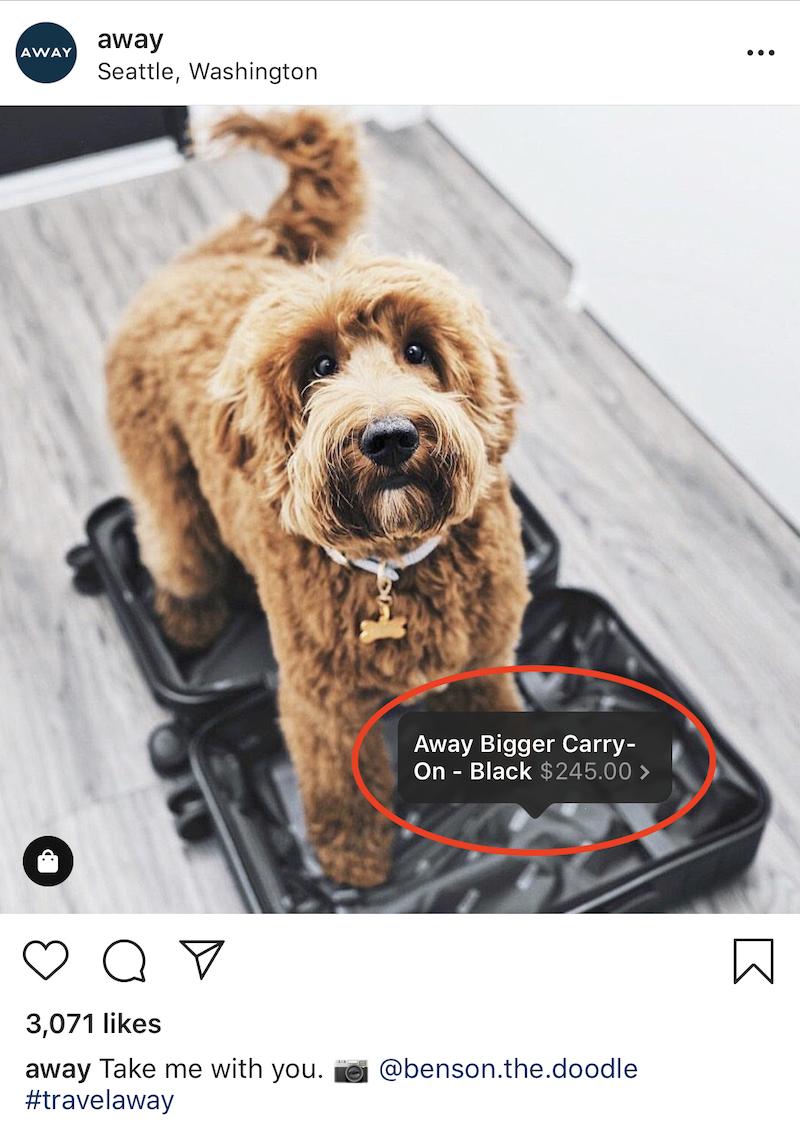 instagram shoppale post